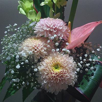 langflowers01.jpg