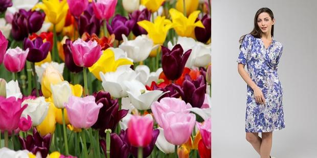 tulipflowerblog3.jpg